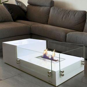 CHEMINÉE Poseidon une table de salon avec cheminée bio étha