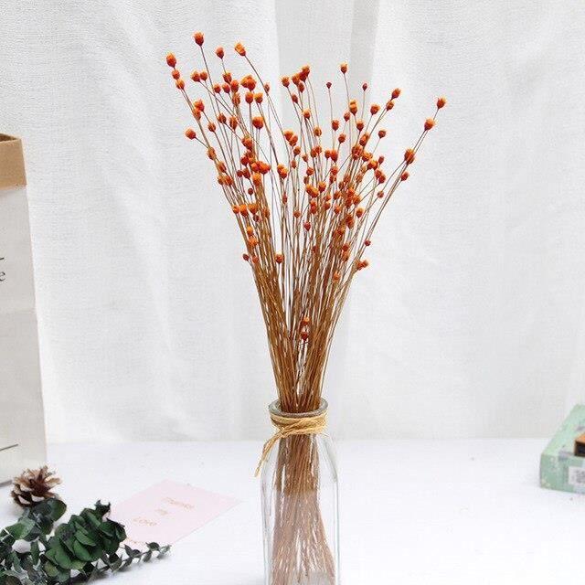 50 pièces réel heureux fleur petites fleurs séchées naturelles Bouquet fleurs sèches presse Mini décoratif photographie ES2791