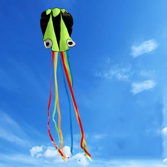 Grand cerf-volant parfait pour les enfants Facile /à voler Rapide /à assembler jeu de plein air