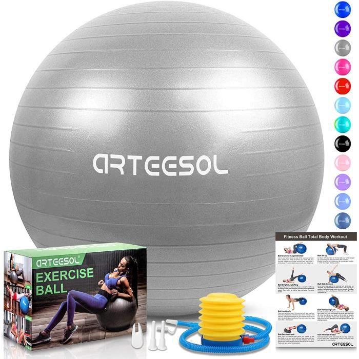 Ballon Fitness, Ballon d'exercice Balle de Fitness de 45cm/55cm/65cm/75cm/85cm Ballon d'équilibre de stabilité Antidérapant avec Po
