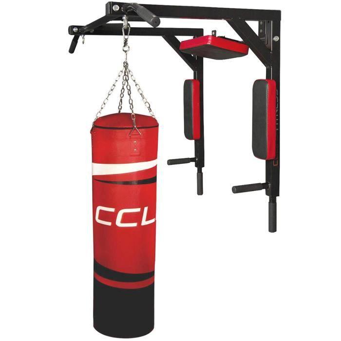 YIS Barre de traction Multifonctionnel, Chaise Romaine Murale, Mur de gymnastique, pour Domicile Gym - en Acier Max 200KG