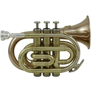 TROMPETTE Trompette d'Études Sib PT-101G