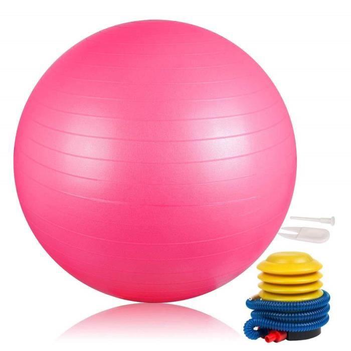 DAMIGRAM Ballon de Gymnastique 65cm, Ballon Suisse pour La Forme Physique, Balle de Pilates-Ballon Gym pour l'exercice, Professio
