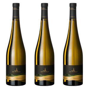 VIN BLANC Gewürztraminer Alto Adige DOC Vin blanc italien 3