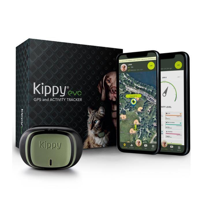 KIPPY - Evo - Le Nouveau Collier GPS avec Suivi d'Activité pour Chiens et Chats, 38 GR, Waterproof, durée 10 Jours, Green Forest