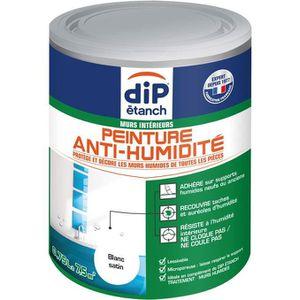 PEINTURE - VERNIS Peinture anti-humidité 750mL - blanc