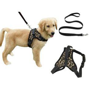 ajustable et Réfléchissant Petit Camouflage Gris PAWTITAS Harnais pour chien//chiot facile à enfiler