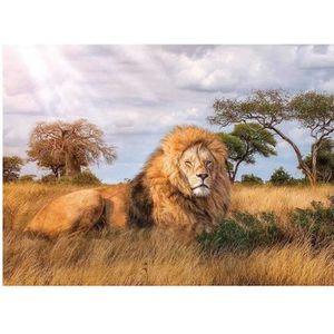 PUZZLE Puzzle Adulte : Le Lion Dans La Savane - 1000 Piec