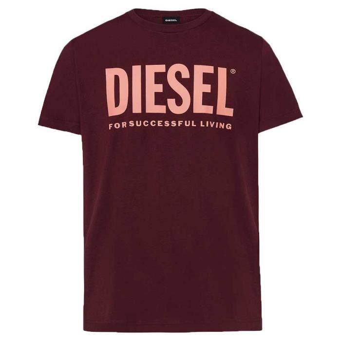 Vêtements Homme T-Shirts Diesel Diego Logo