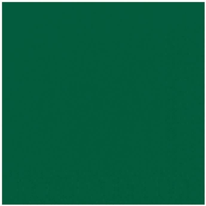 DUNI - 20 Serviettes ouate 33x33cm 3 plis Vert foncé