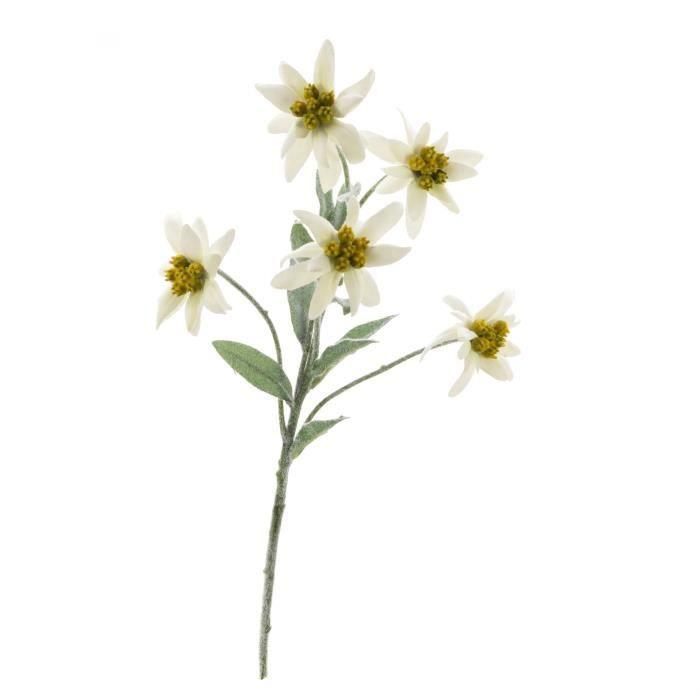 Edelweiss artificielle SOPHIA avec 5 fleurs, blanc, 40 cm - Fleur blanche - Bouquet artificiel