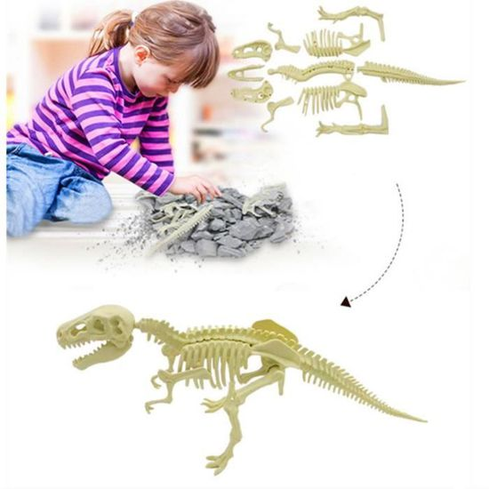 Kit d/'Excavation Squelette Dinosaures aux choix à assembler//collectioner Kinzel