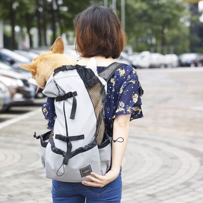 Accessoires auto intérieurs,Universel pour chats chiens animaux sacs à dos S M L XL tailles motos sacs à dos pour - Type gray - S