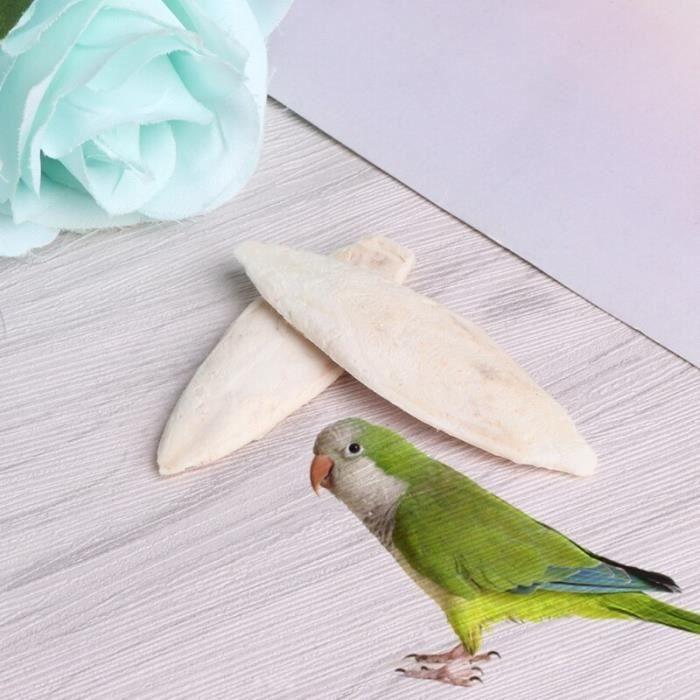 1 sac de seiche sepie Sepia os de poisson nourriture pour oiseaux Calcium Pickstone Pet [93E980B]