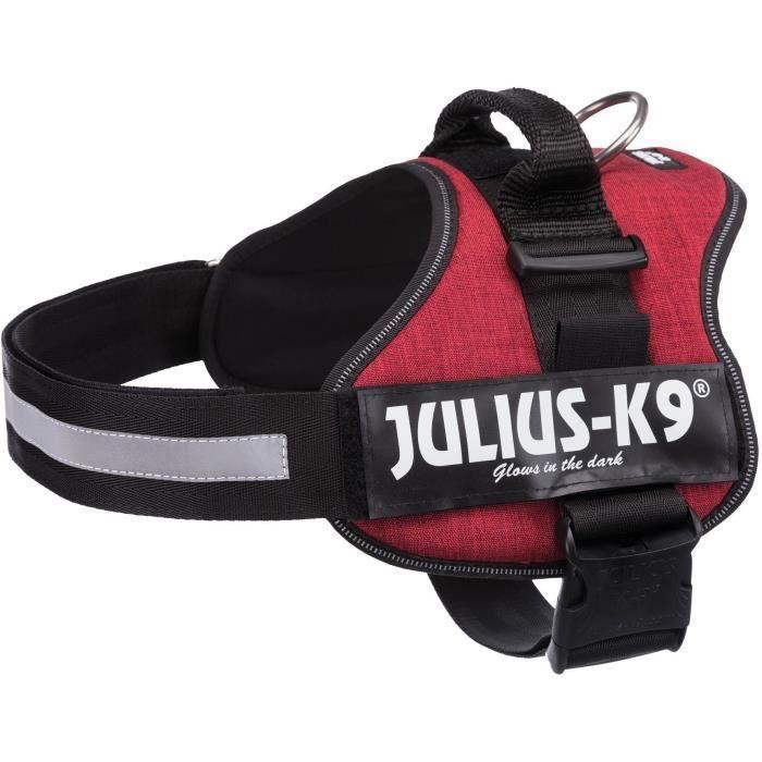 JULIUS K9 Harnais Power 2–L–XL : 71–96 cm - 50 mm - Rouge bordeaux - Pour chien