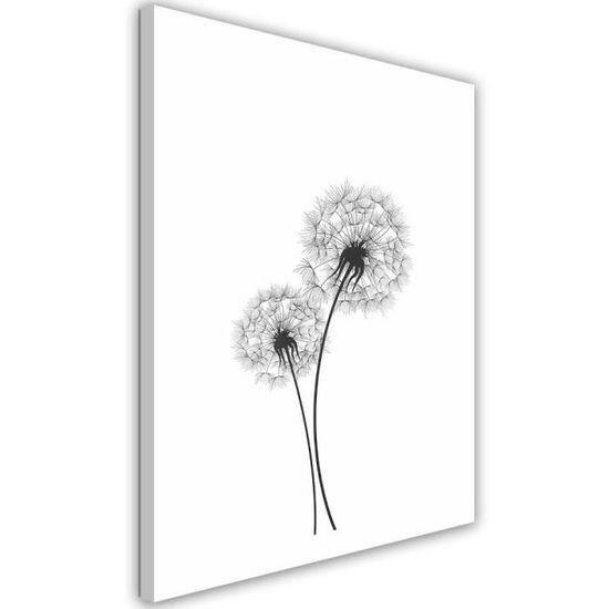 Tableau Déco Mural Impression Sur Toile 50x70 Dessin Nature Plante Pissenlit Noir Et Blanc