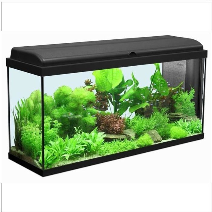 aquarium iban longueur de 100cm noir 100cm achat. Black Bedroom Furniture Sets. Home Design Ideas