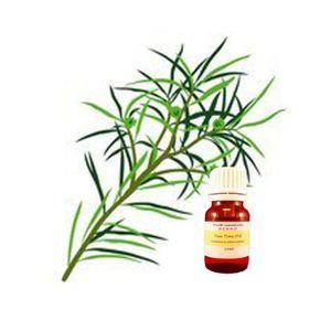 HUILE ESSENTIELLE Huile essentielle arbre à thé 10ml