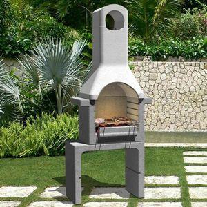 Barbecue charbon avec cheminee