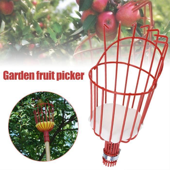Accueil Cueilleur de fruits Panier de récolte avec coussin Jardin Cueilleur de fruits frais