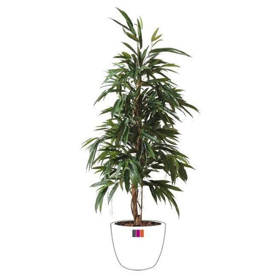 Ficus Artificiel Tronc Tressé-160cm