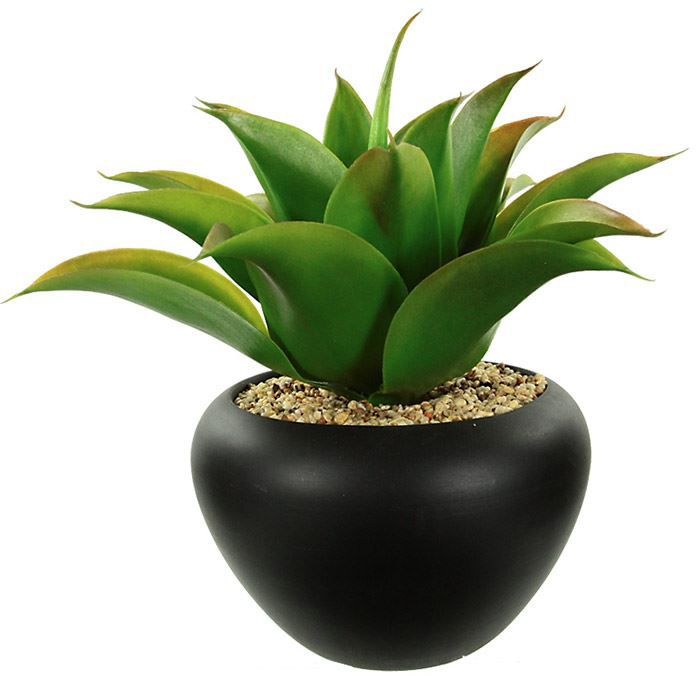 plante artificielle avec pot c ramique aloe vera achat vente fleur artificielle s ch e. Black Bedroom Furniture Sets. Home Design Ideas