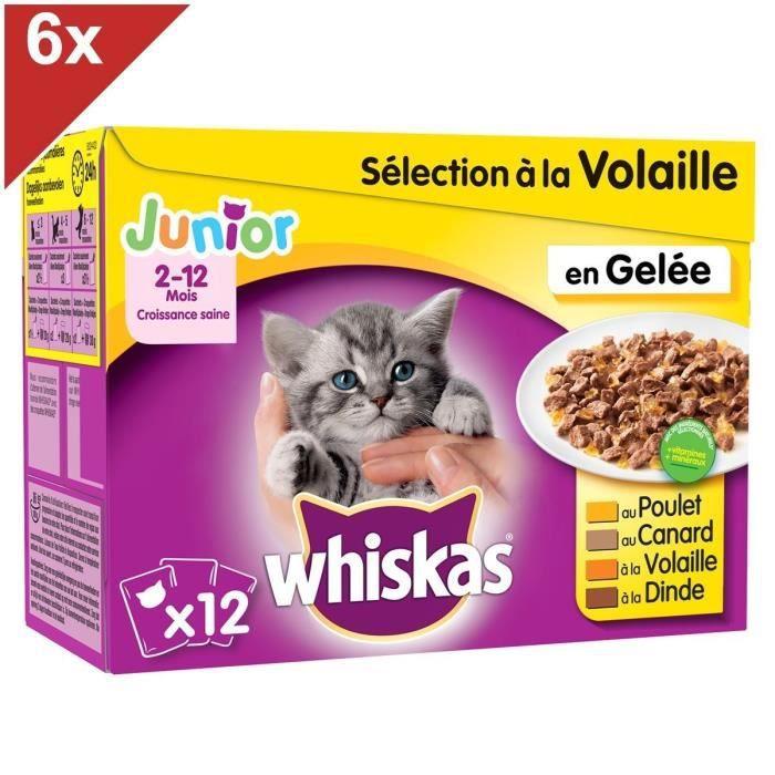 WHISKAS Junior 72 Sachets fraîcheur gelée sélection volaille chaton 100g (6x12)