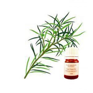 HUILE ESSENTIELLE Huile essentielle arbre à thé 5ml