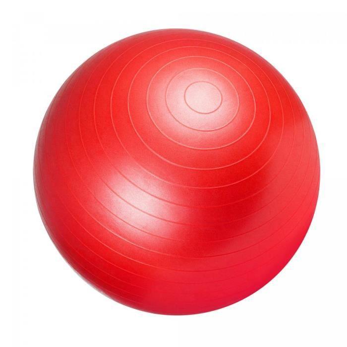 Swiss ball - Ballon de gym ROUGE / 65cm