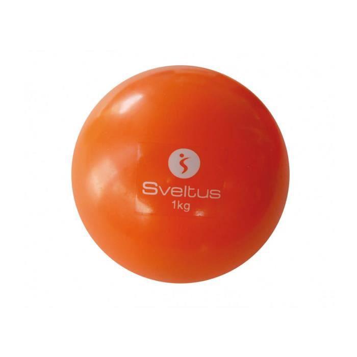 Balle lestée violette 1 kg