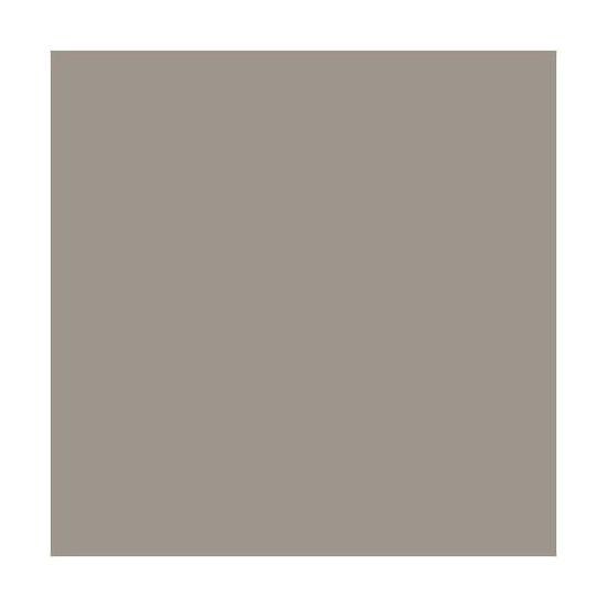 Peinture Dulux Valentine Architecte Mat Absolu Fume 0 5 L Achat Vente Peinture Vernis Peinture Dulux Valentine Ar Cdiscount