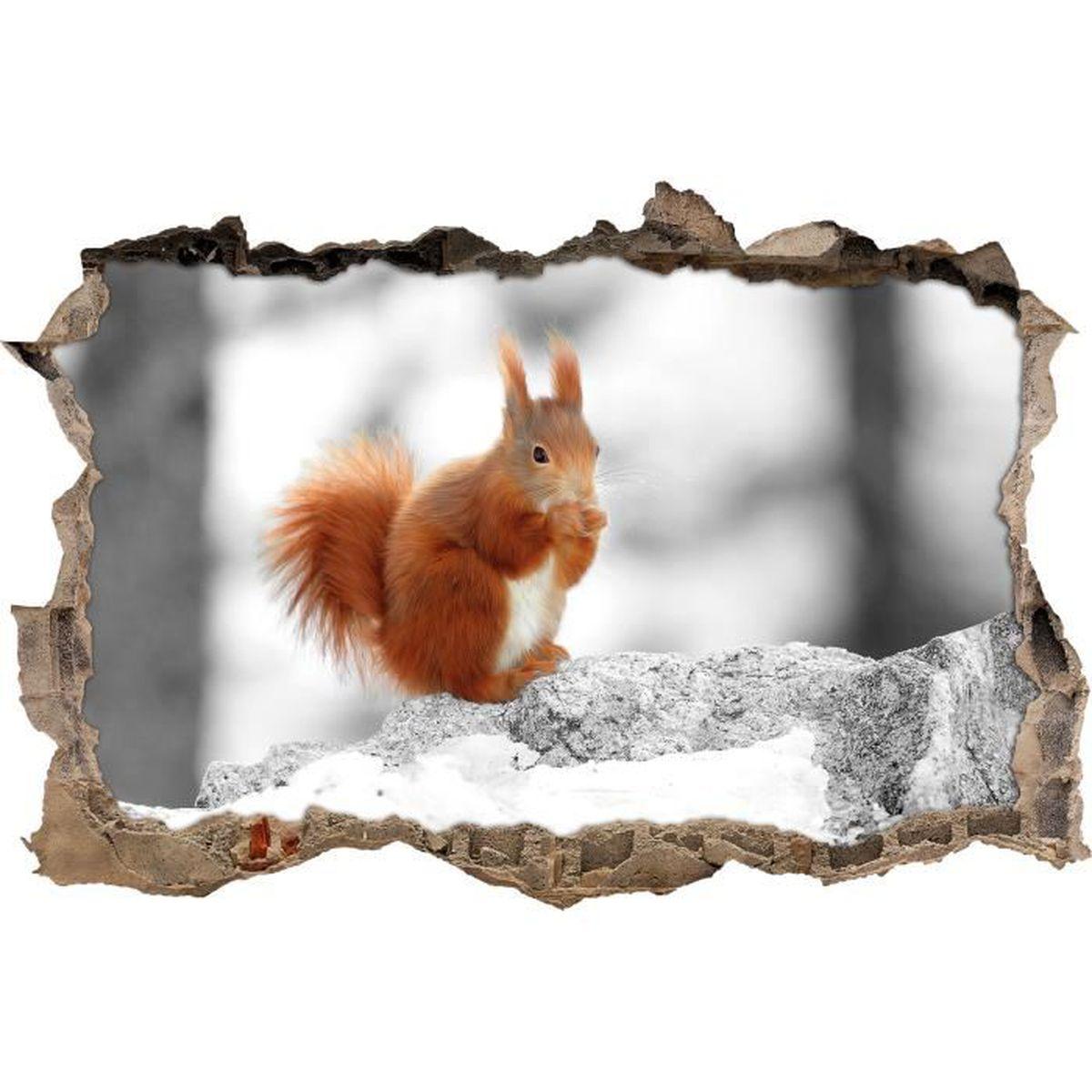 Écureuil mignon dans la forêt enneigée noir mur blanc percée / en 3D look,  mur ou format vignette de la porte: 92x62cm, stickers ... - Achat / Vente  stickers - Soldes sur