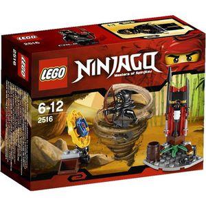 ASSEMBLAGE CONSTRUCTION Lego Ninjago La Séance d'Entraînement