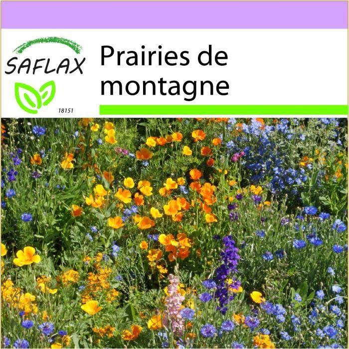 SAFLAX - Prairies de montagne - 1000 graines - 16 Variétés