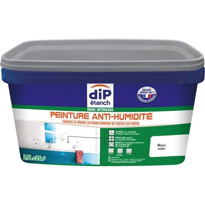 Peinture Anti Humidité 2 5l Blanc