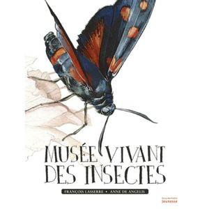 DOCUMENTAIRE ENFANT Musée vivant des insectes