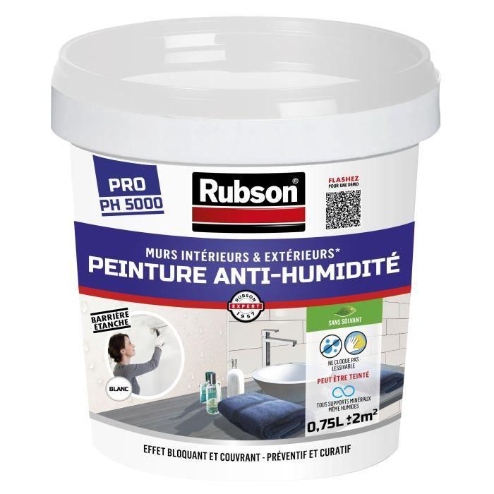 Rubson Peinture Anti Humidité Interieure Blanc 0 75l