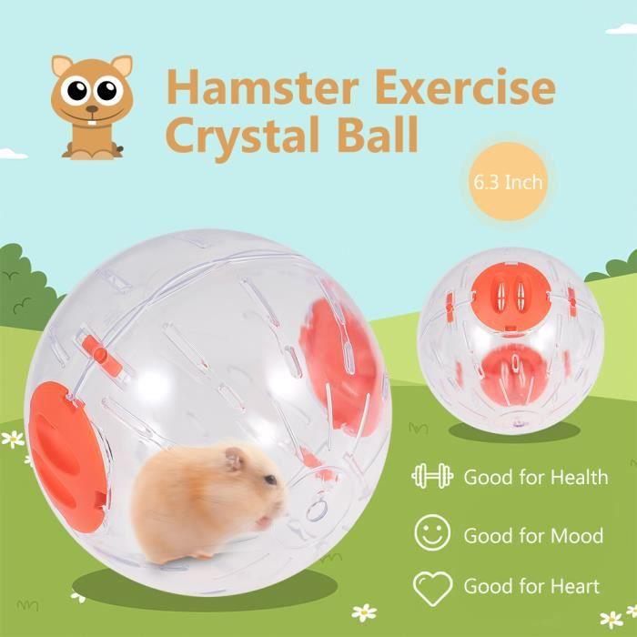 Balle d'exercice Hamster Balle de cristal pour hamster Balle de course pour hamster claire de 6,3 pouces