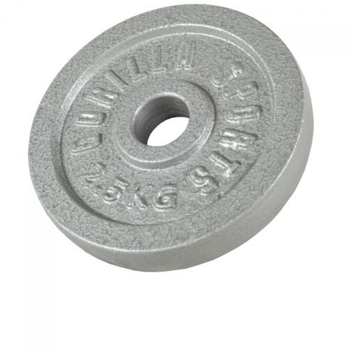 1 x Poids disque en fonte de 2,5 KG, Ø 31mm d'alésage
