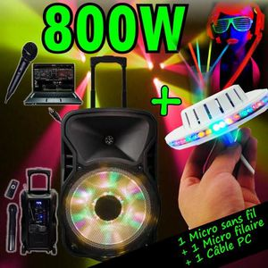 PACK SONO ENCEINTE SONO 800W PORTABLE + USB MP3 + SD + BLUET