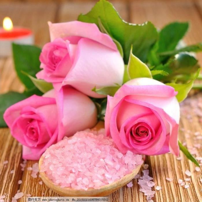100 Pcs Rose Graines Rose Rose Fleur Plantes Jardin Bonsaï Plantes Vivaces Fleur Graine
