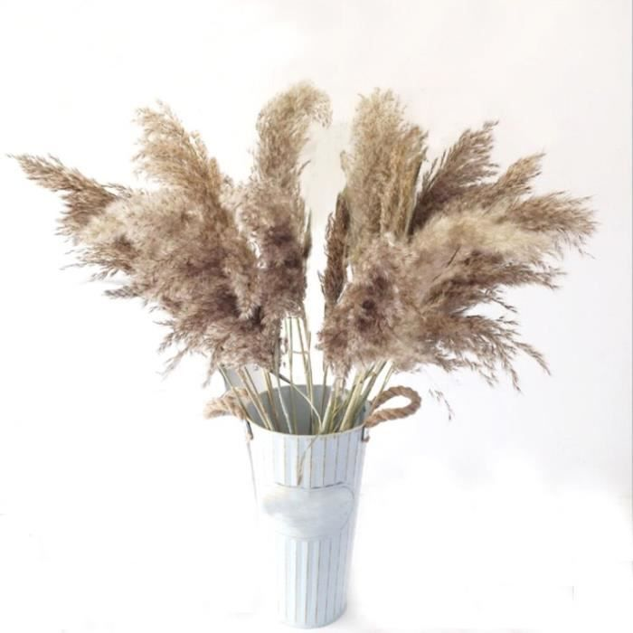 Décoration florale,Bouquets de fleurs naturelles séchées,100g,agencement floral de lavande,composition - Type 10pcs pampas grass