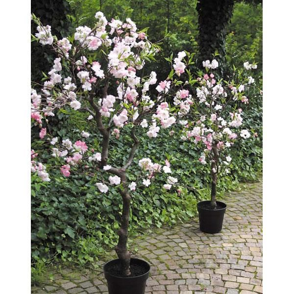 cerisier en fleurs artificiel rose en pot 120 cm arbre artificiel fleuri fleur de. Black Bedroom Furniture Sets. Home Design Ideas