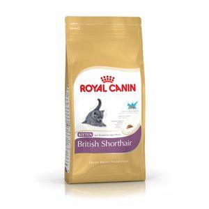 CROQUETTES Royal Canin - Croquettes British Shorthair pour Ch