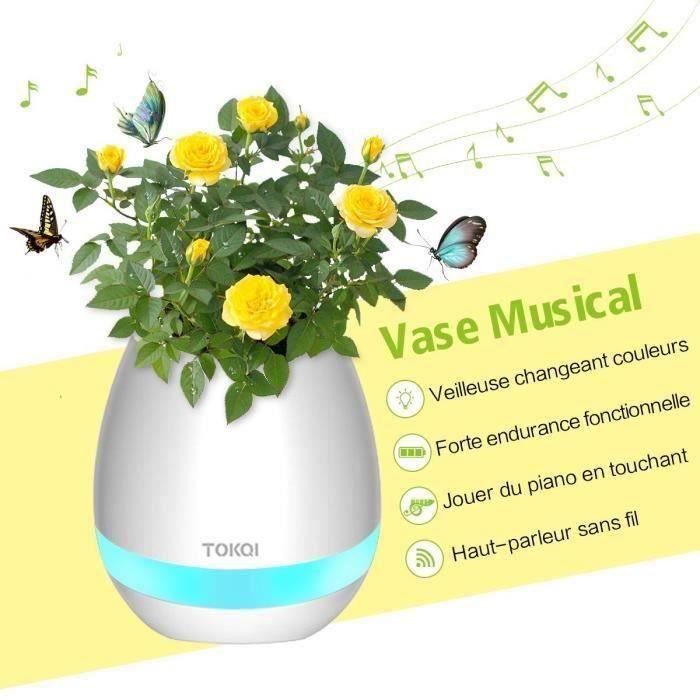 ENCEINTE NOMADE Enceinte bluetooth lumineux Vase Magique Musicale