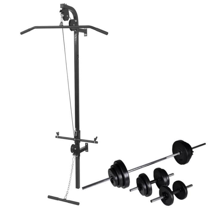 vidaXL Tour de musculation murale avec jeu d'haltères et poids 30,5 kg