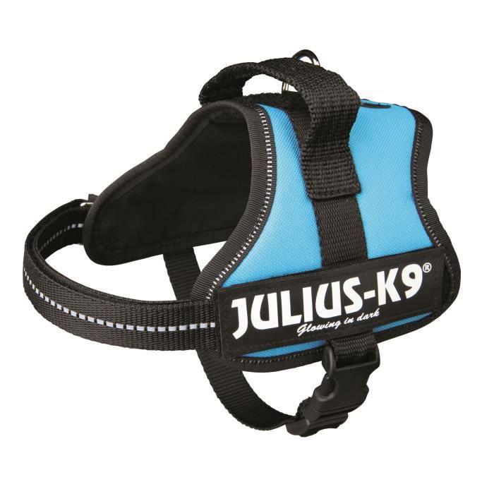 Harnais Power Julius-K9 - Mini-Mini - S : 40-53 cm-22 mm - Aigue-marine - Pour chien