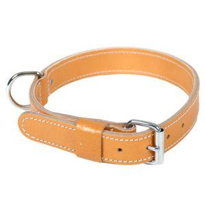 Trixie Harnais Power pour Chien Orange Cuivr/é Taille 3//XL