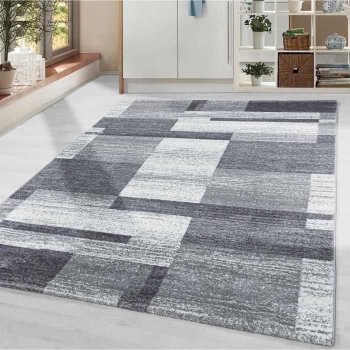 Tapis salon à poils courts motif moderne à carreaux gris blanc à poils doux [Argent, 120x170 cm]