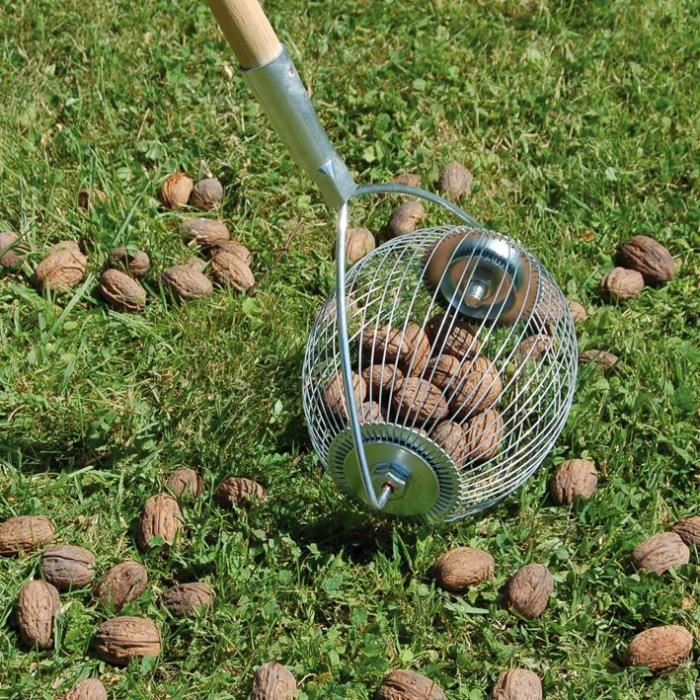 Boule ramasse noix - manche inox
